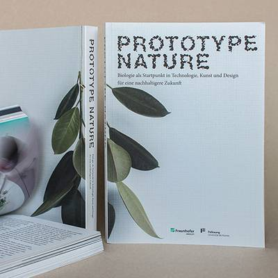 Prototype Nature Buch